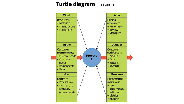 Charting The Process With The Help Of A Turtle