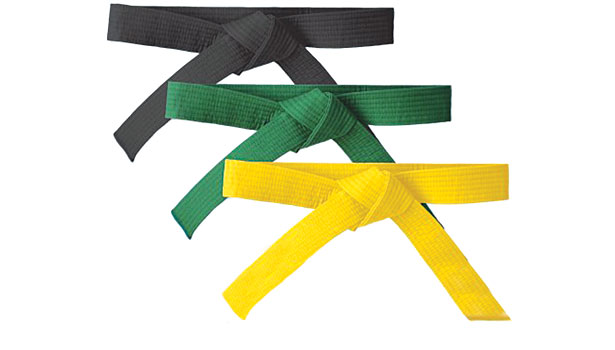 Quality as well Lean Six Sigma Awareness Handouts furthermore The 3 Qualities Of Black Belt Excellence together with Using Xerox Lean Six Sigma To Create Real Value For Customers furthermore How To Initiate A Six Sigma Project. on six sigma belts